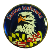Easton Hockey Pin