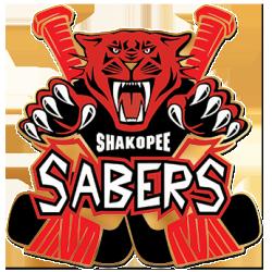SaberHockey